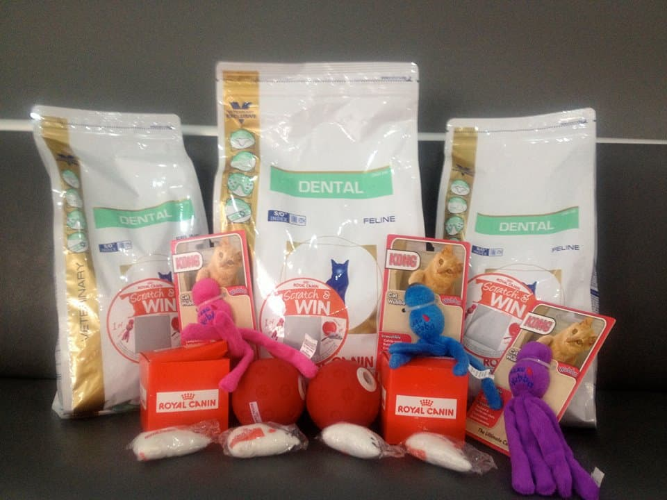 An image of pet products